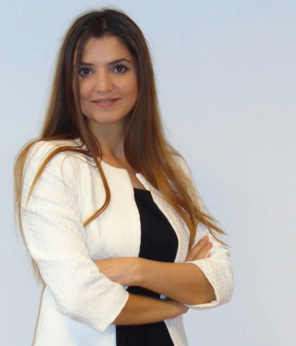 mr. E. Yilmaz